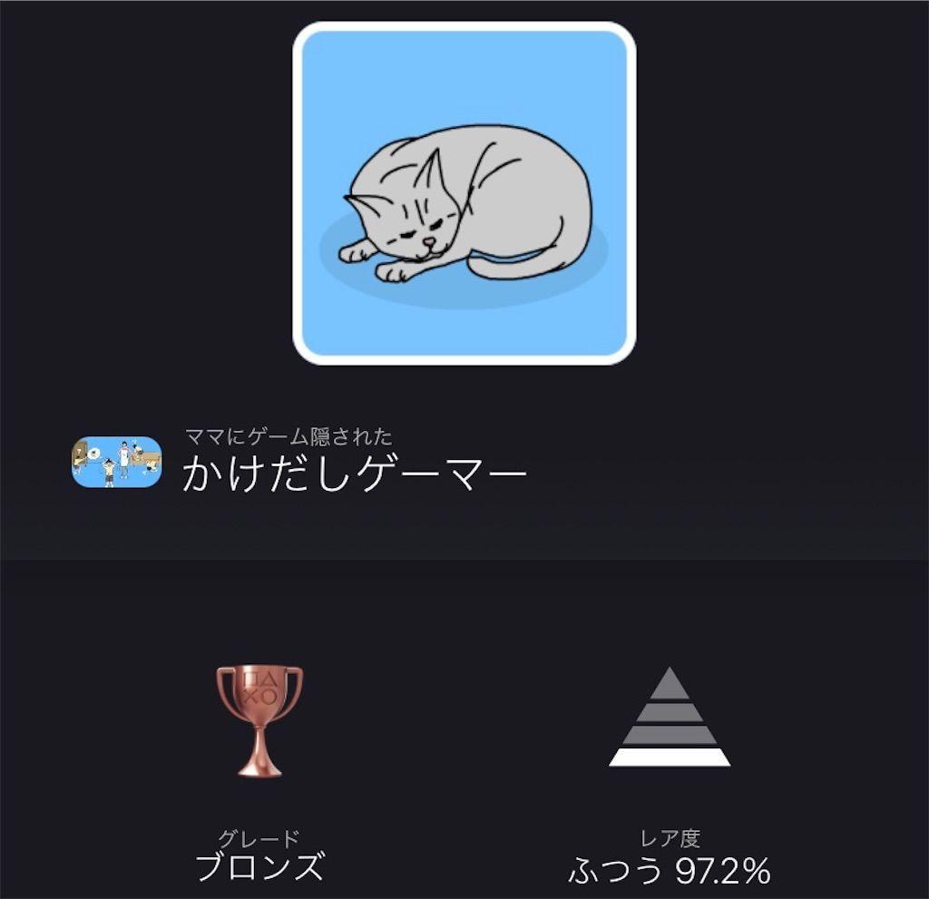 f:id:tatsutatsu2150:20210303102045j:plain