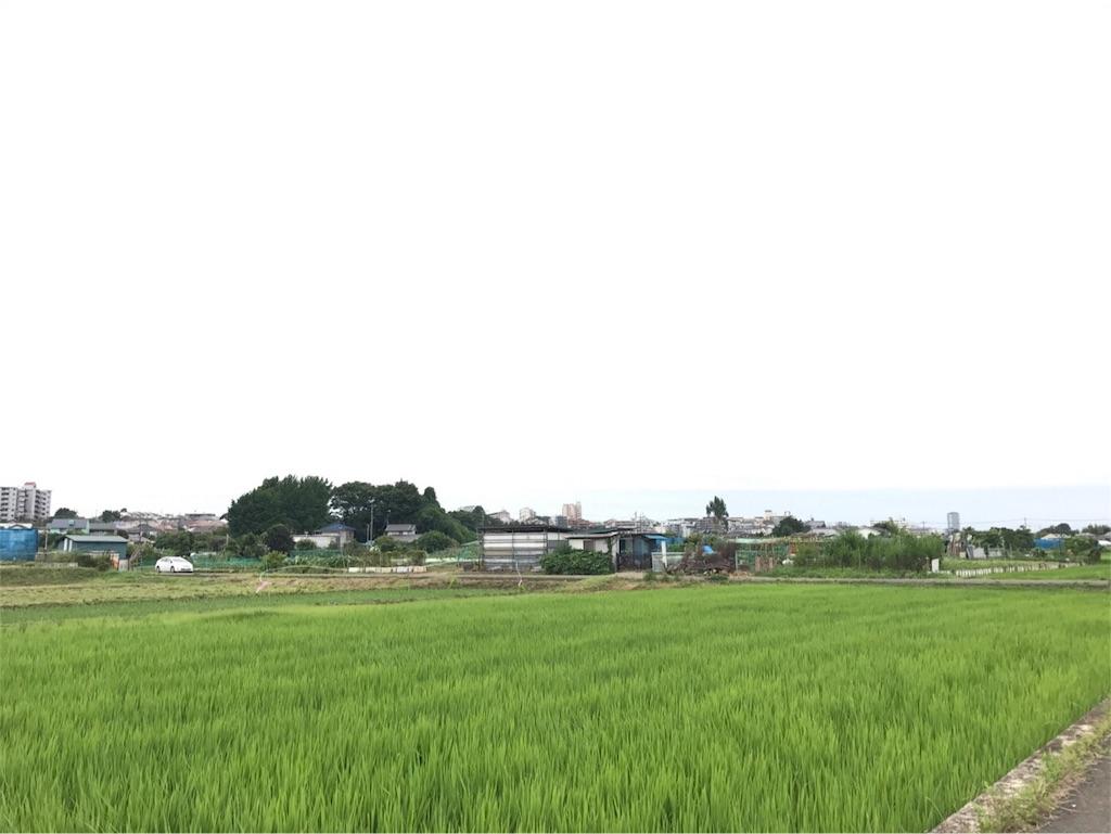 f:id:tatsuya-saito:20180219080017j:image
