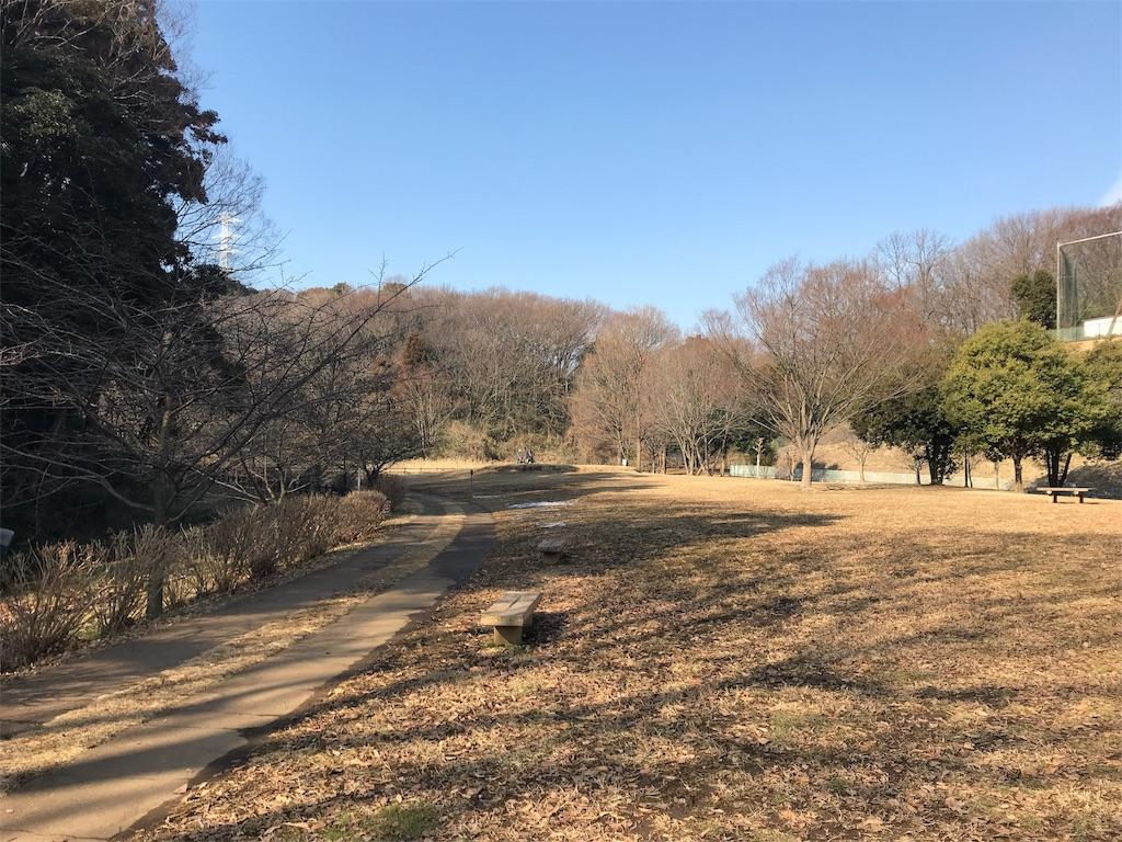 f:id:tatsuya-saito:20180219080125j:image