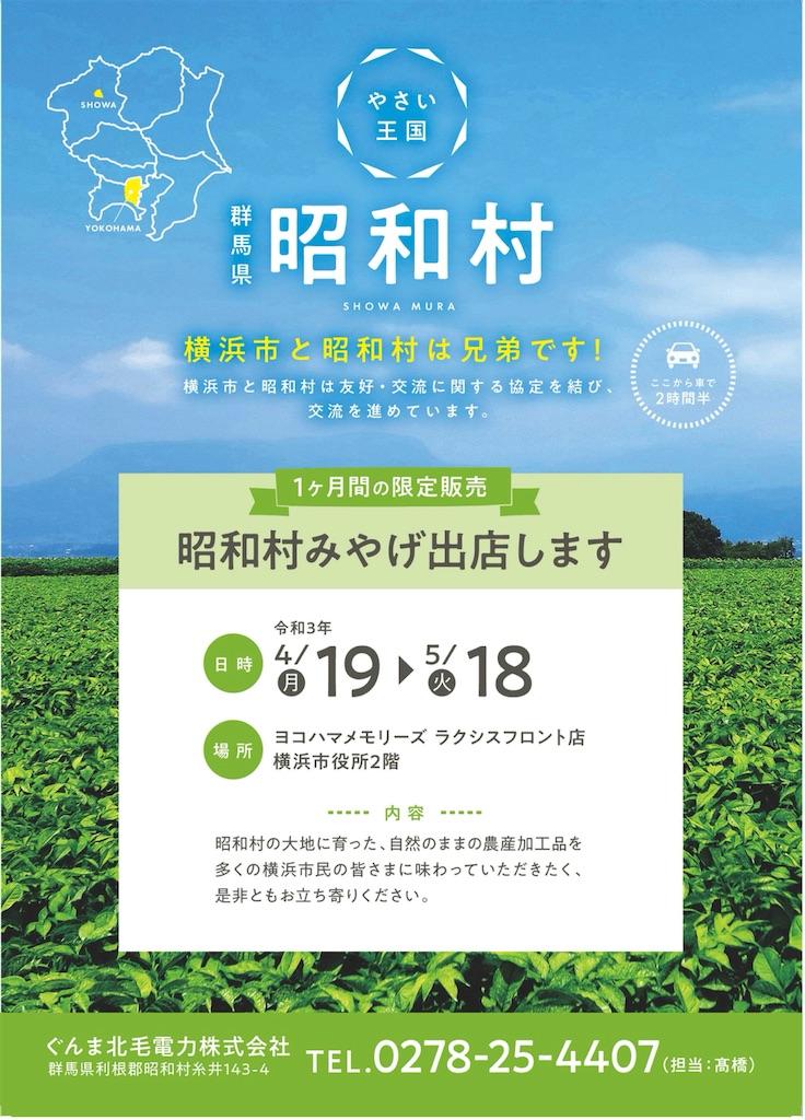 f:id:tatsuya-saito:20210418232609j:image