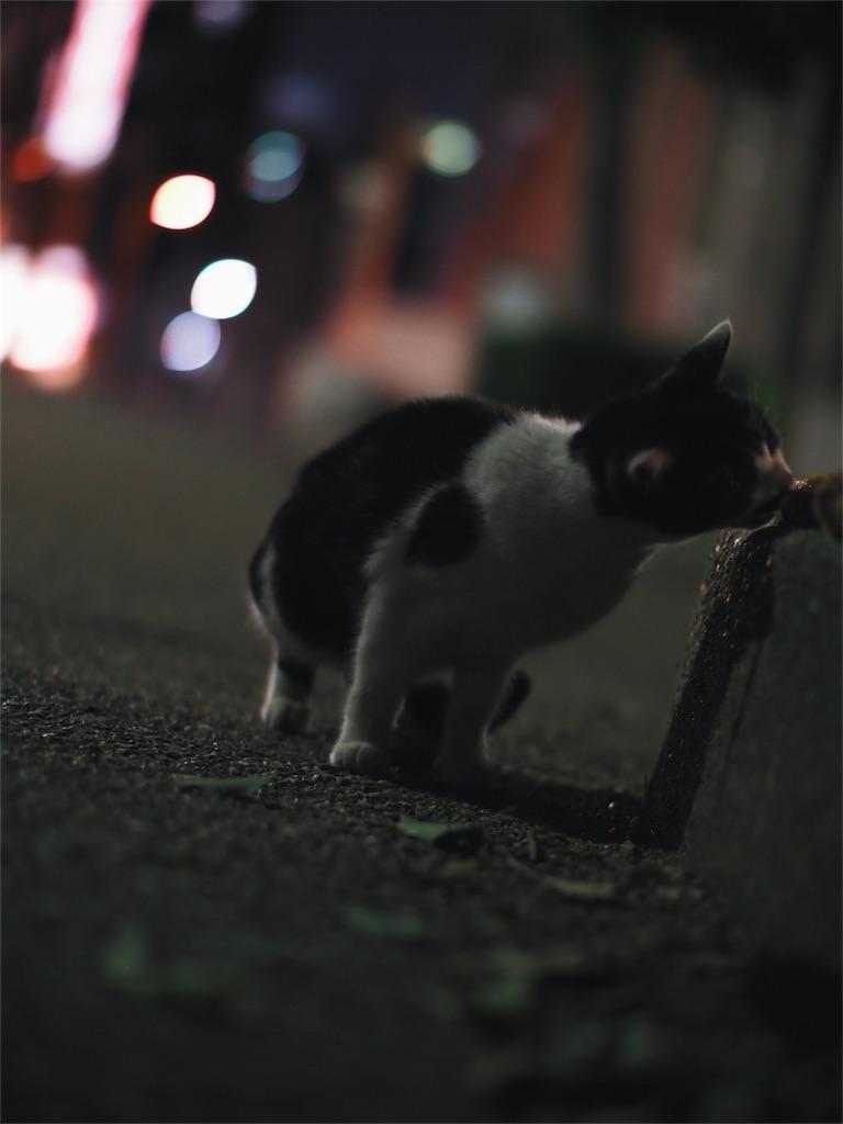 f:id:tatsuya1977:20170308052501j:image