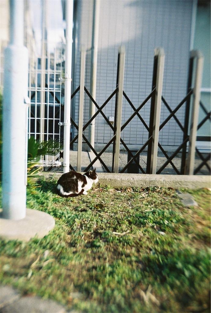 f:id:tatsuya1977:20170308104952j:image