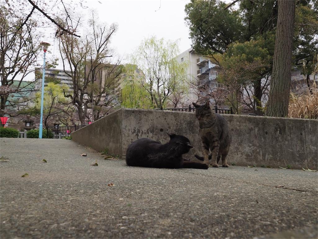 f:id:tatsuya1977:20170331121237j:image