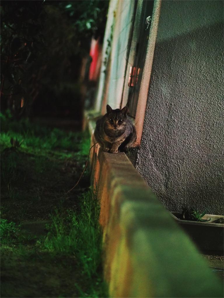 f:id:tatsuya1977:20170403223152j:image