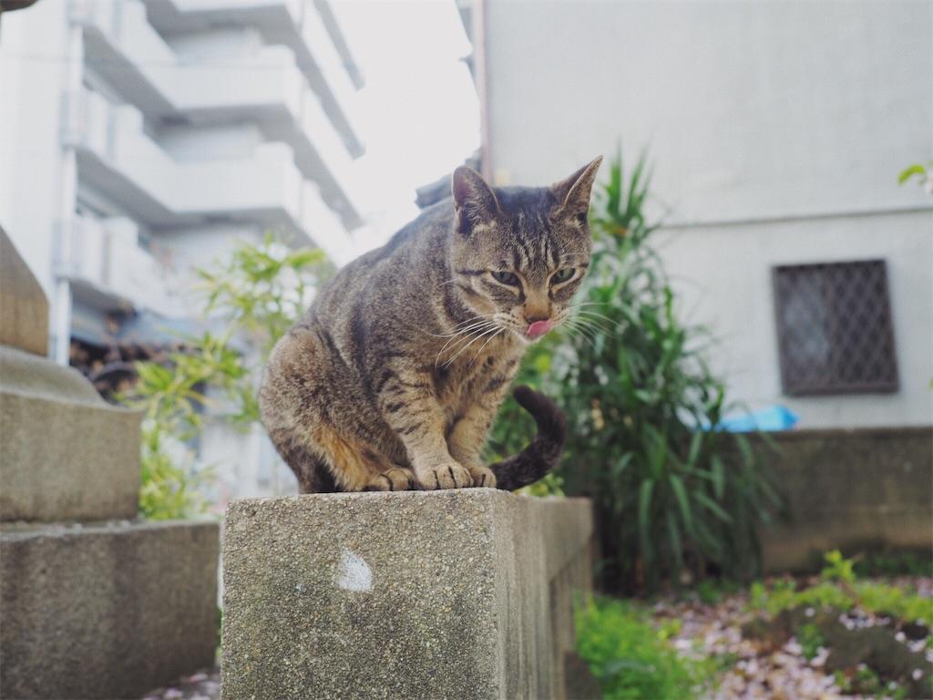 f:id:tatsuya1977:20170410120031j:image
