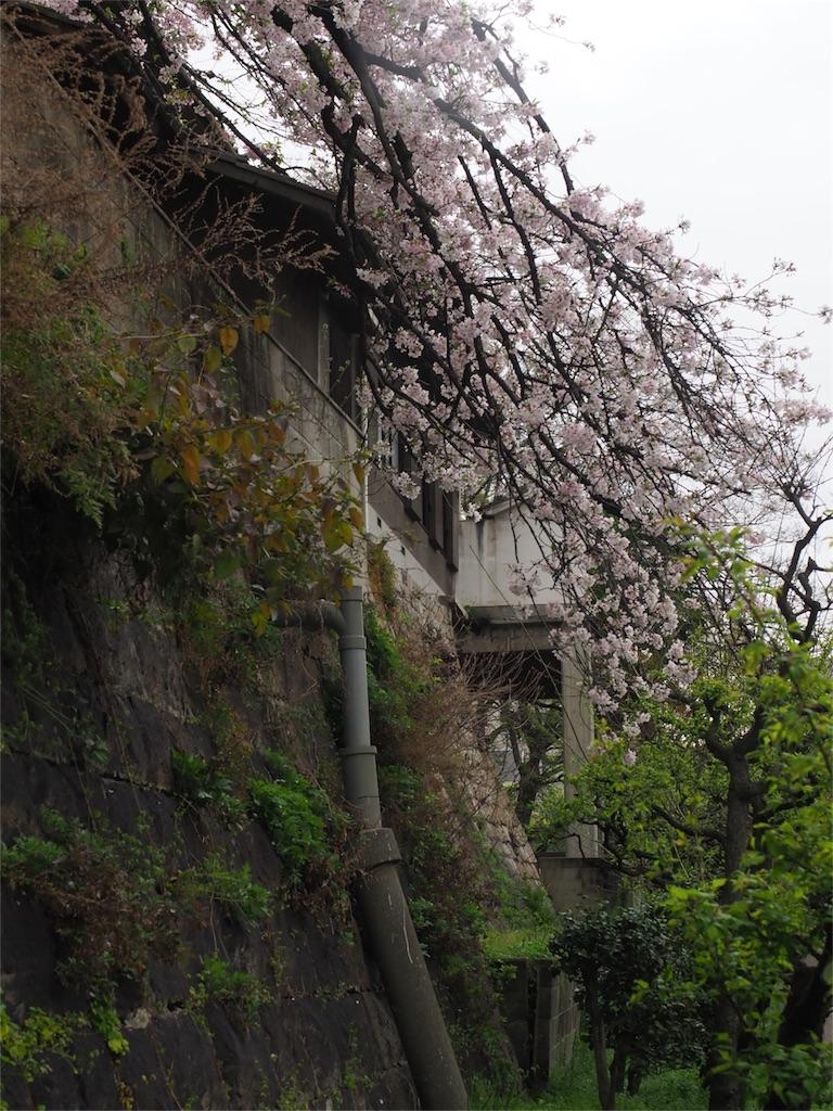 f:id:tatsuya1977:20170412104542j:image