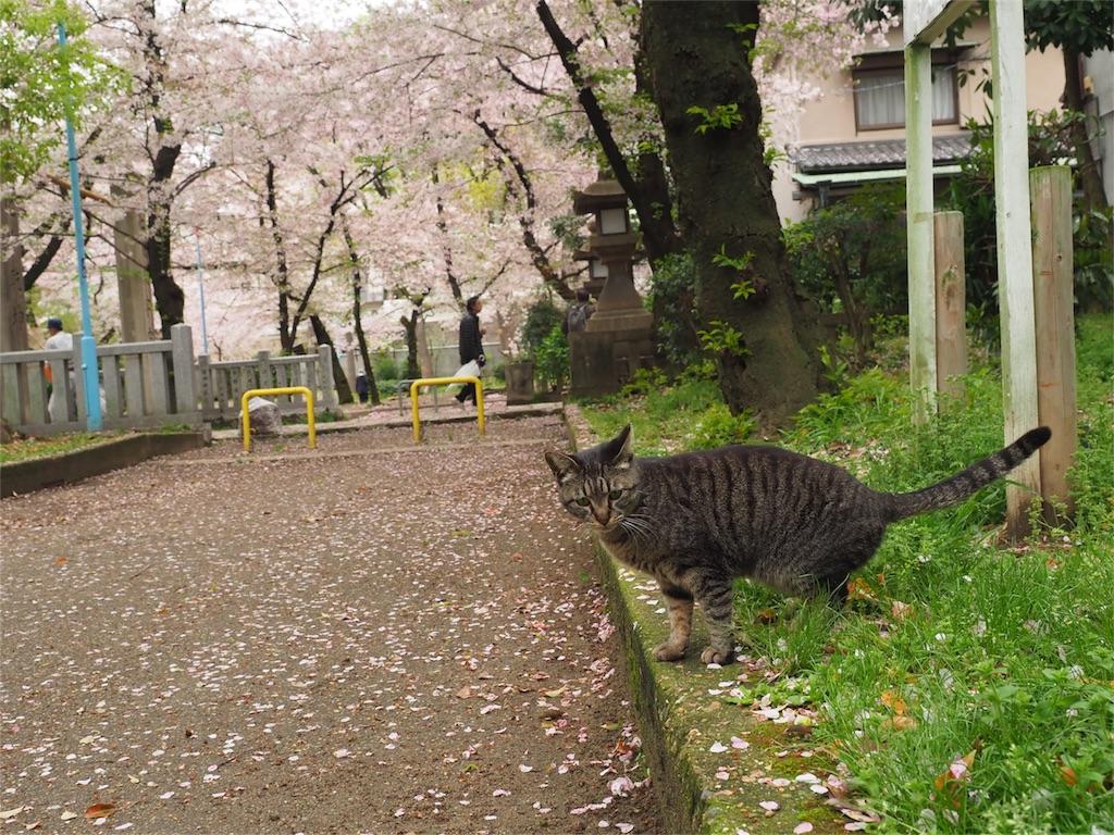 f:id:tatsuya1977:20170412105608j:image