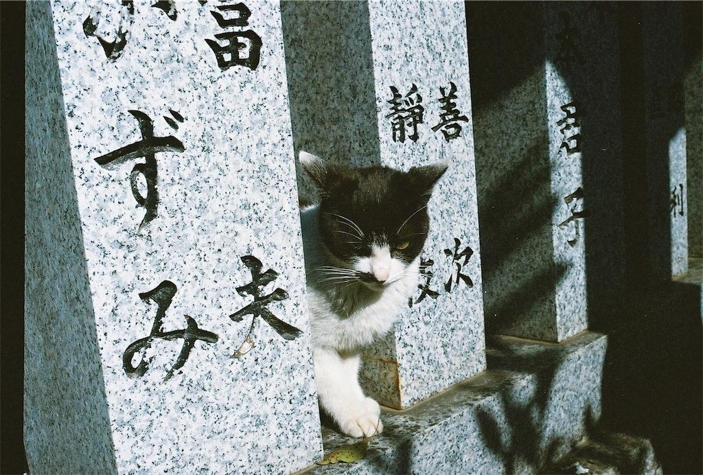 f:id:tatsuya1977:20170430212234j:image