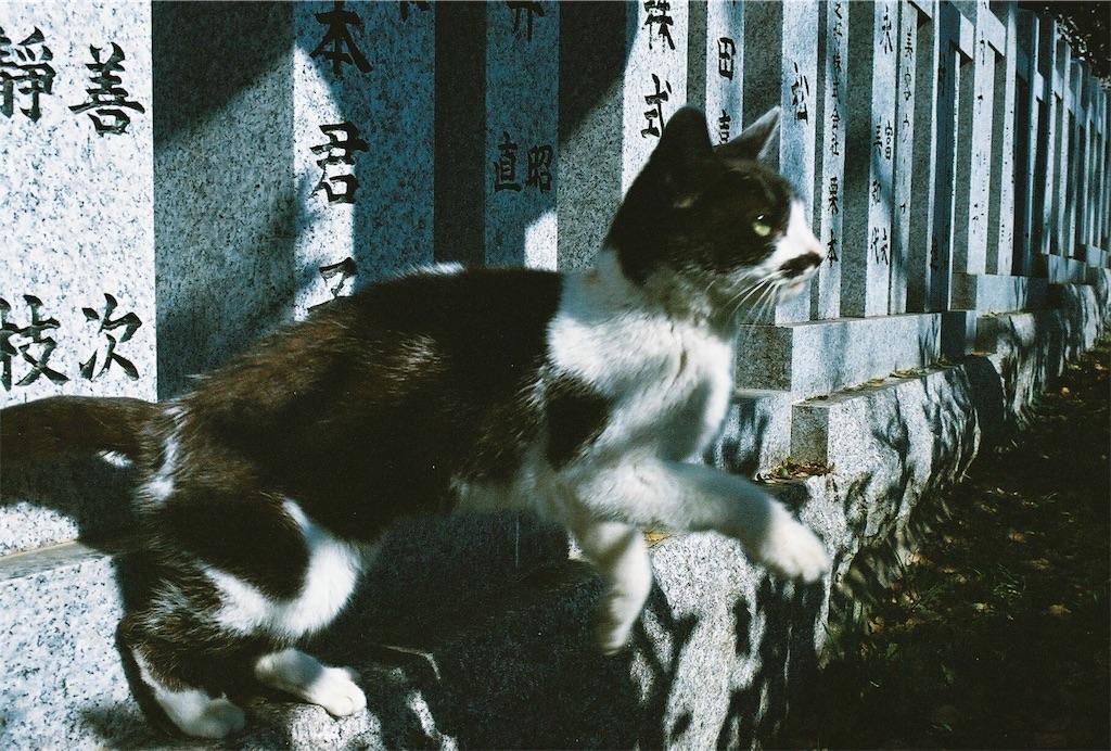 f:id:tatsuya1977:20170430212250j:image