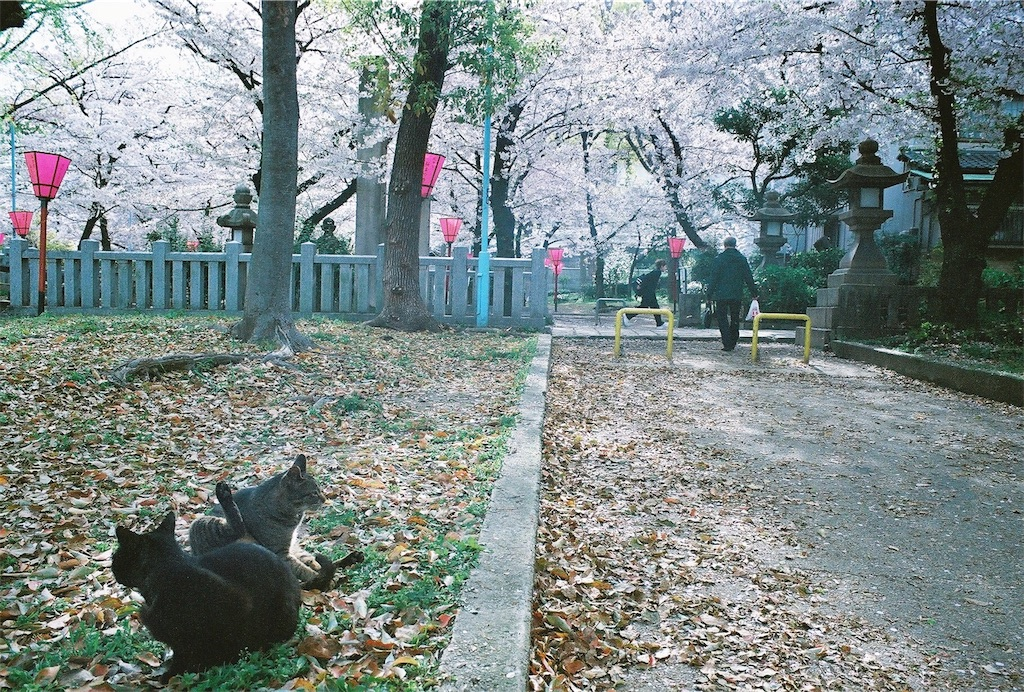 f:id:tatsuya1977:20170430212817j:image