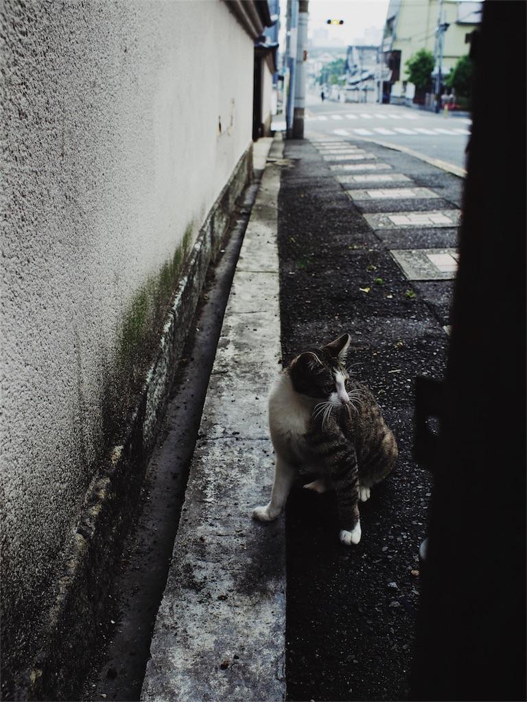 f:id:tatsuya1977:20170601093734j:image