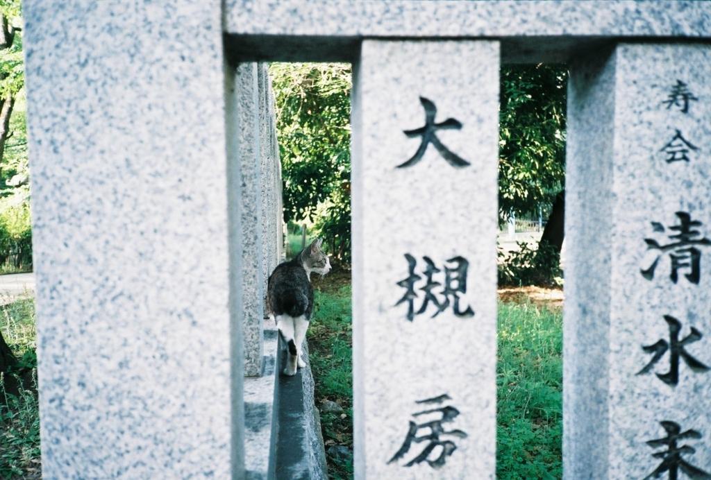 f:id:tatsuya1977:20170612180425j:plain