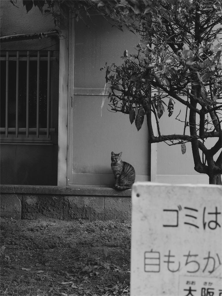 f:id:tatsuya1977:20170628202331j:image