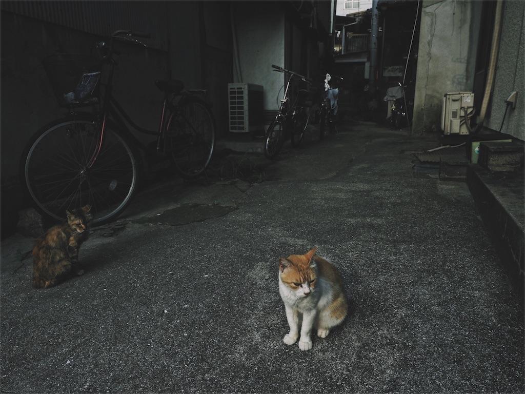 f:id:tatsuya1977:20170718150939j:image