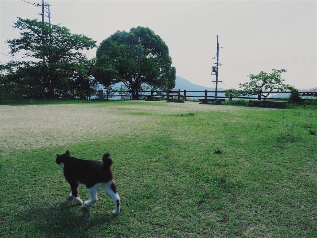 f:id:tatsuya1977:20170720231606j:image