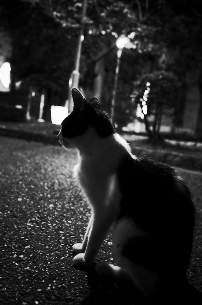 f:id:tatsuya1977:20170812100534j:image