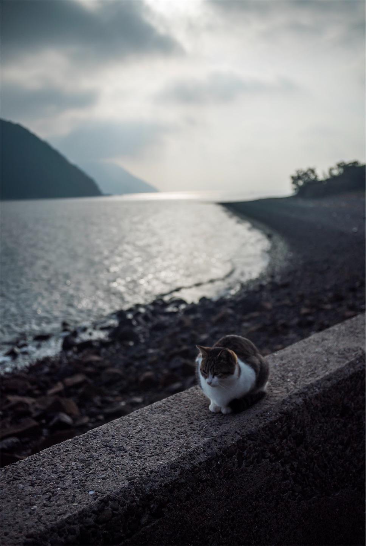f:id:tatsuya1977:20171204223200j:image