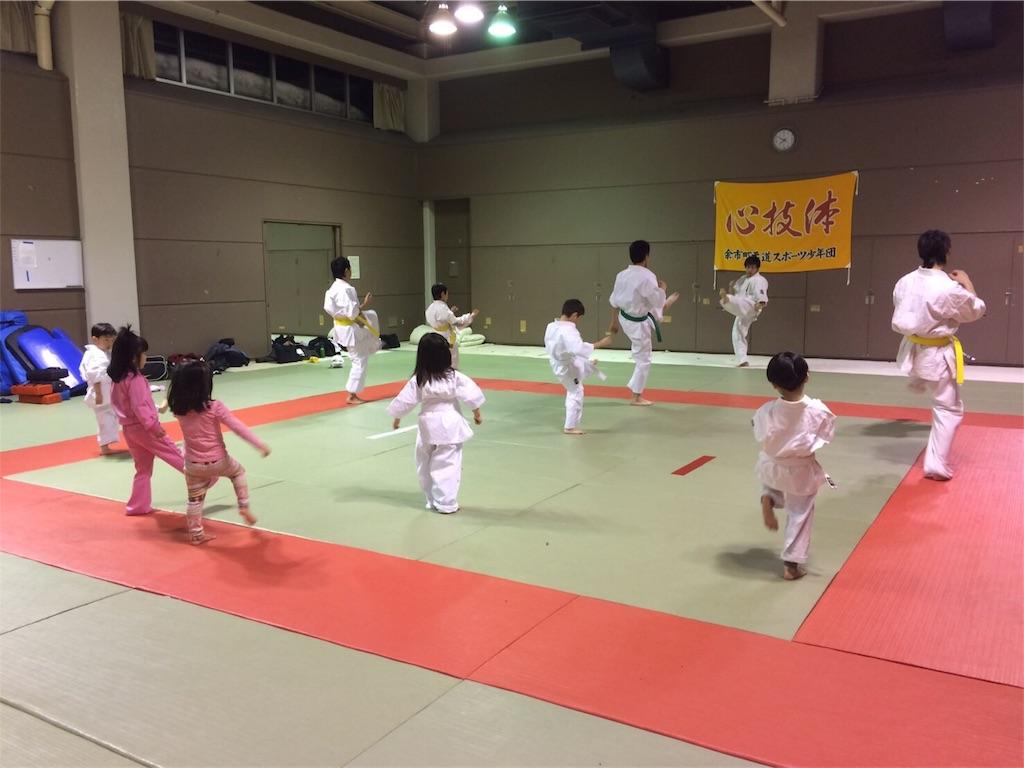 f:id:tatsuya_karate_mawasigeri_060110:20170225001008j:image