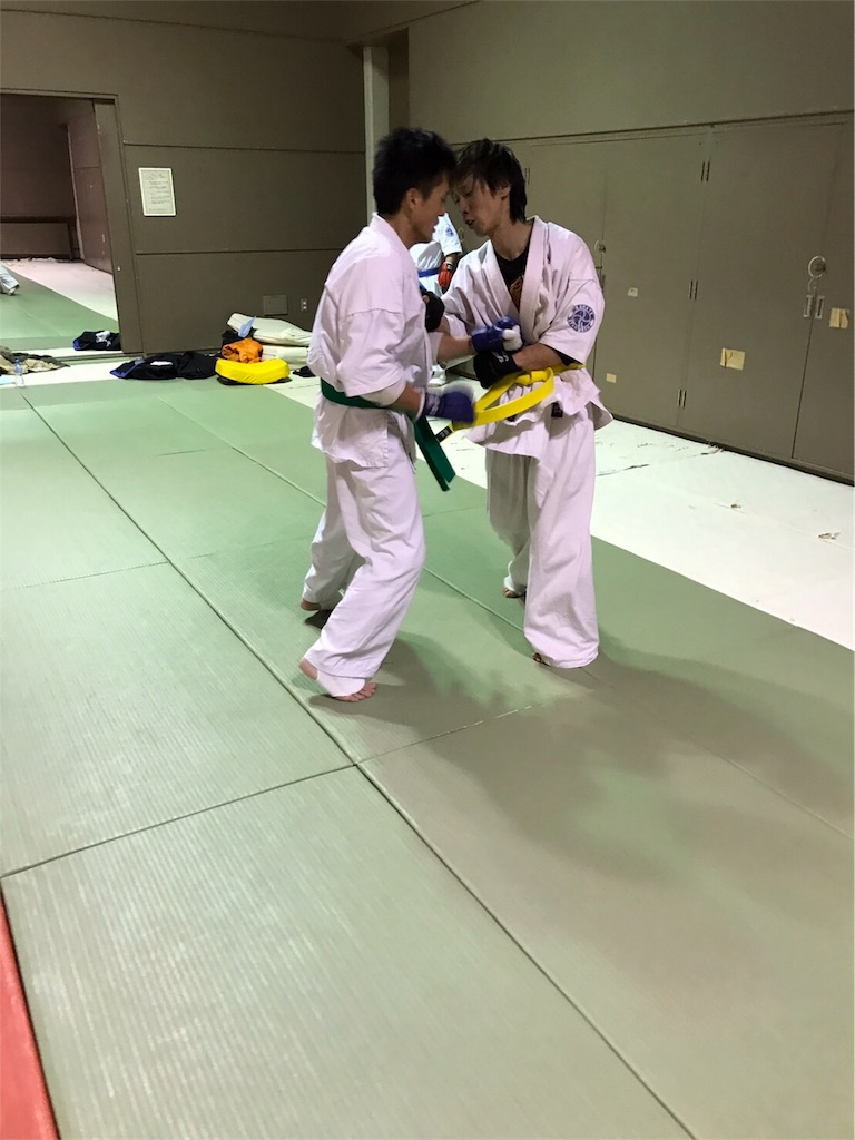 f:id:tatsuya_karate_mawasigeri_060110:20170301235526j:image