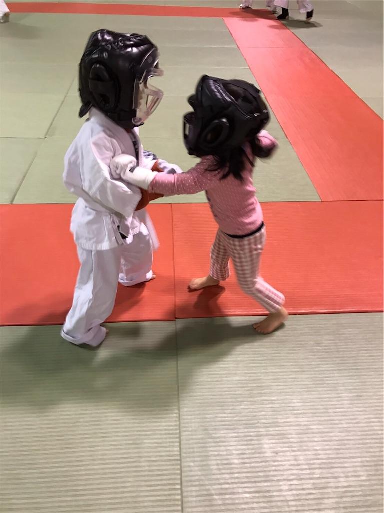 f:id:tatsuya_karate_mawasigeri_060110:20170301235706j:image