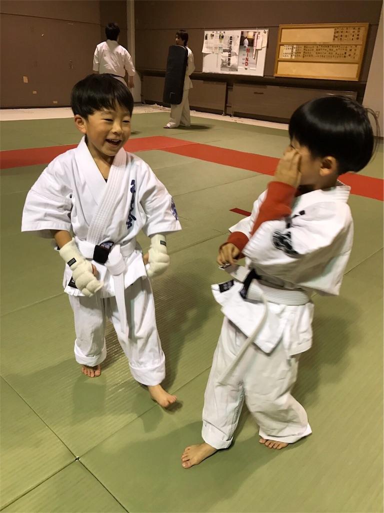f:id:tatsuya_karate_mawasigeri_060110:20170304173922j:image