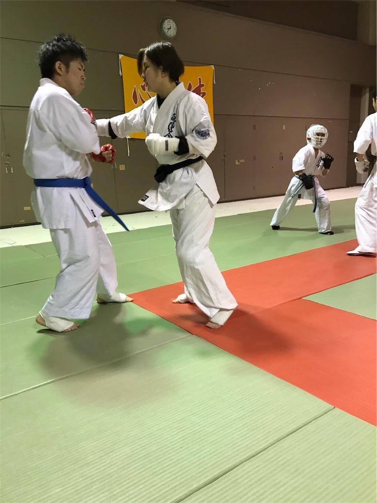 f:id:tatsuya_karate_mawasigeri_060110:20170304173943j:image