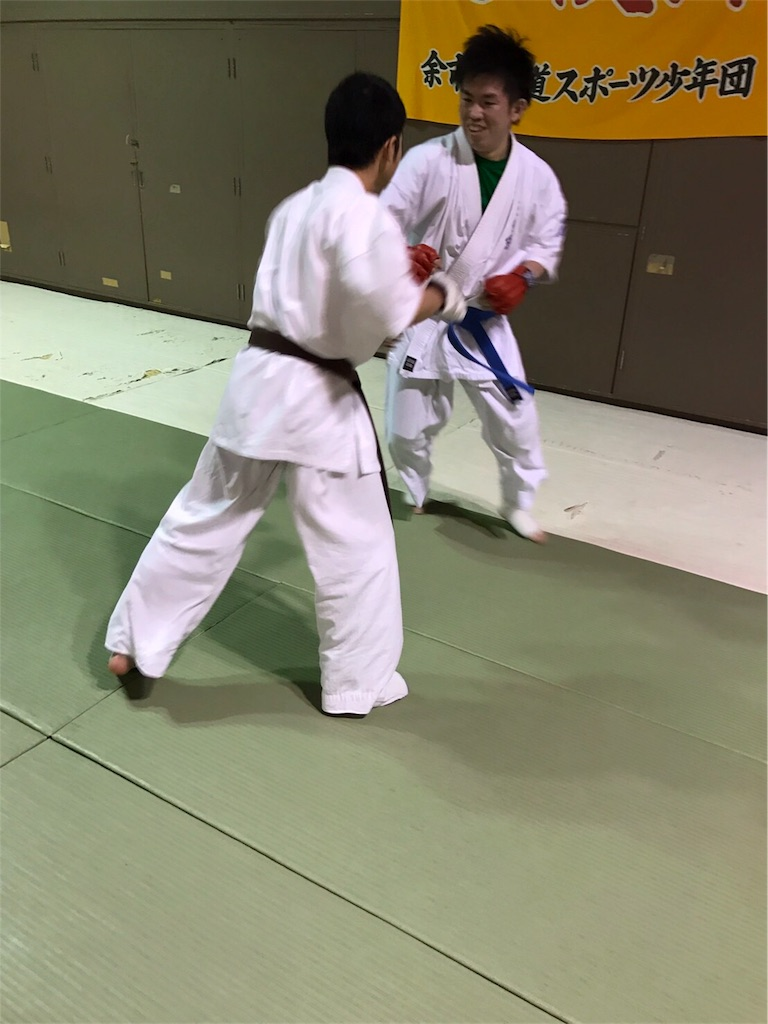 f:id:tatsuya_karate_mawasigeri_060110:20170304174307j:image