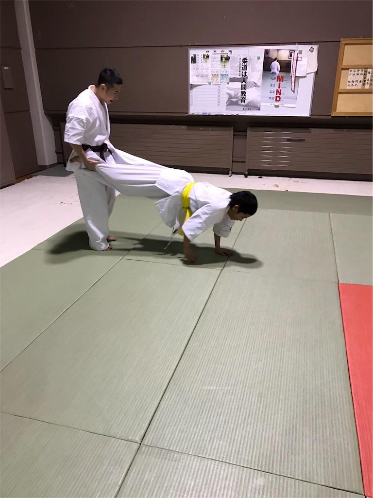 f:id:tatsuya_karate_mawasigeri_060110:20170310224226j:image