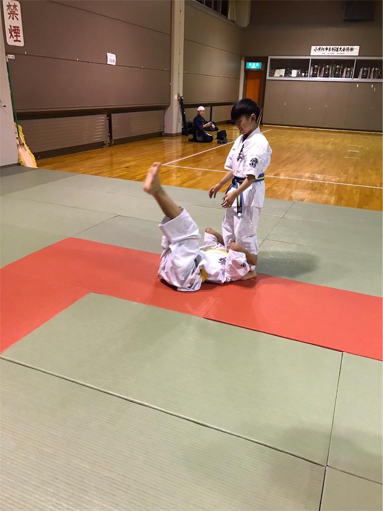 f:id:tatsuya_karate_mawasigeri_060110:20170310224324j:image