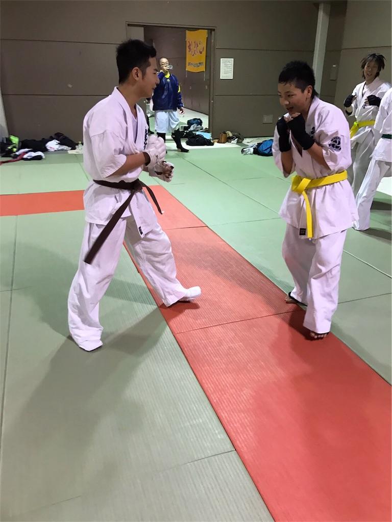 f:id:tatsuya_karate_mawasigeri_060110:20170330133545j:image