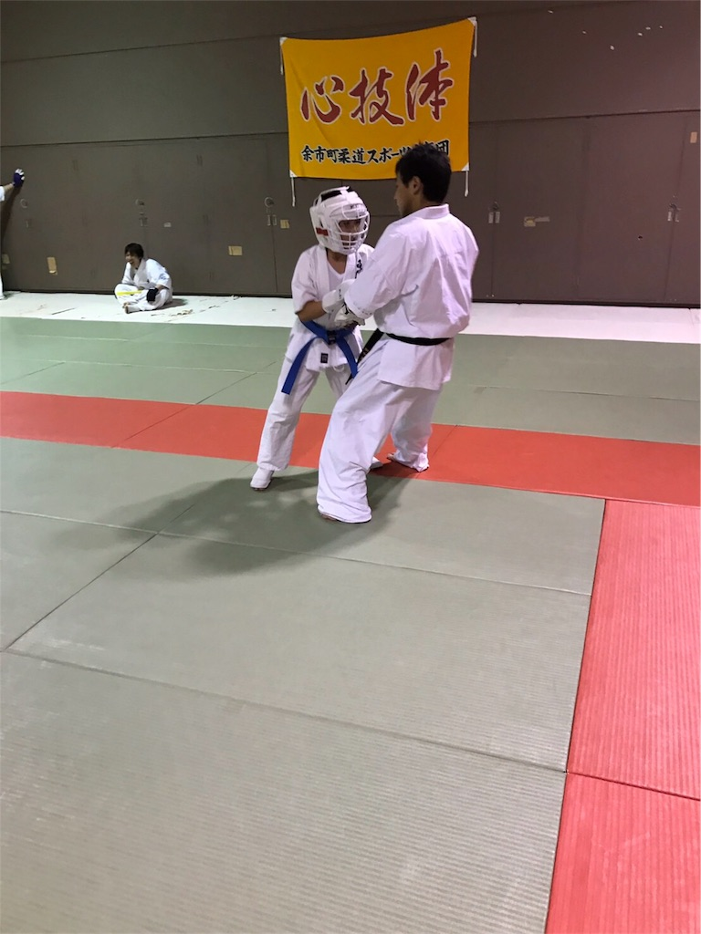 f:id:tatsuya_karate_mawasigeri_060110:20170330133608j:image