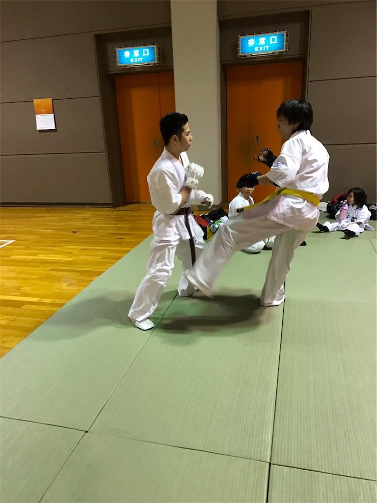 f:id:tatsuya_karate_mawasigeri_060110:20170330133617j:image