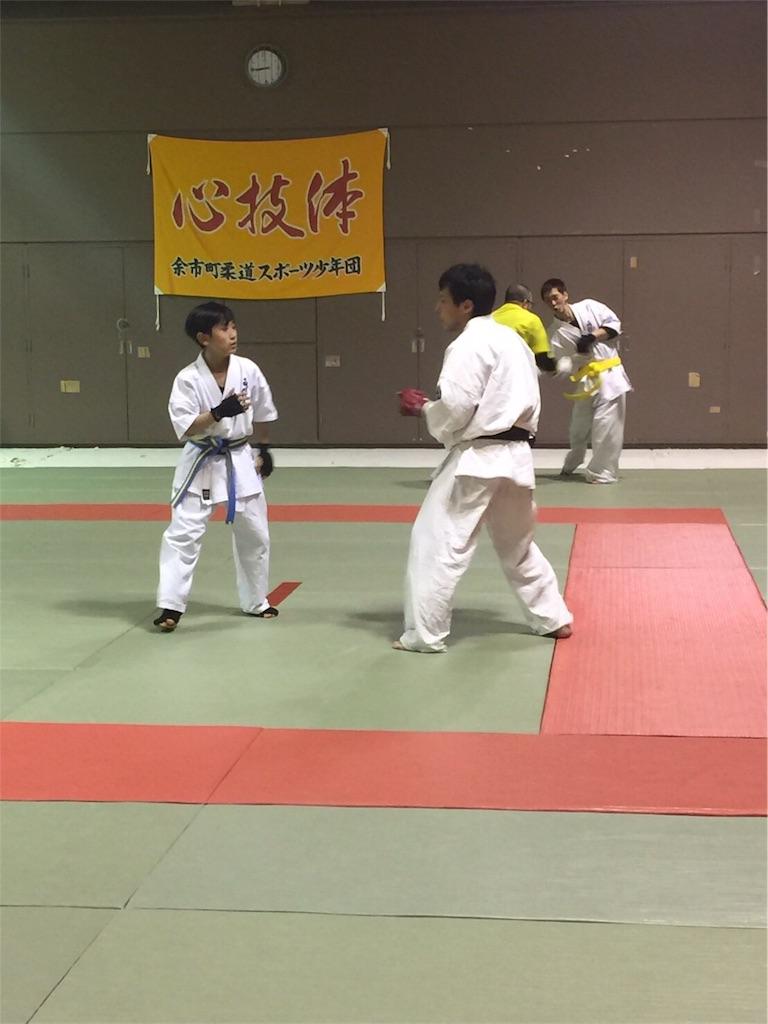 f:id:tatsuya_karate_mawasigeri_060110:20170403234754j:image