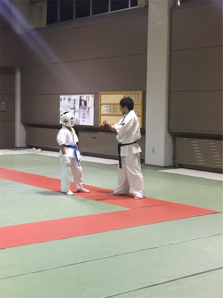 f:id:tatsuya_karate_mawasigeri_060110:20170403234820j:image