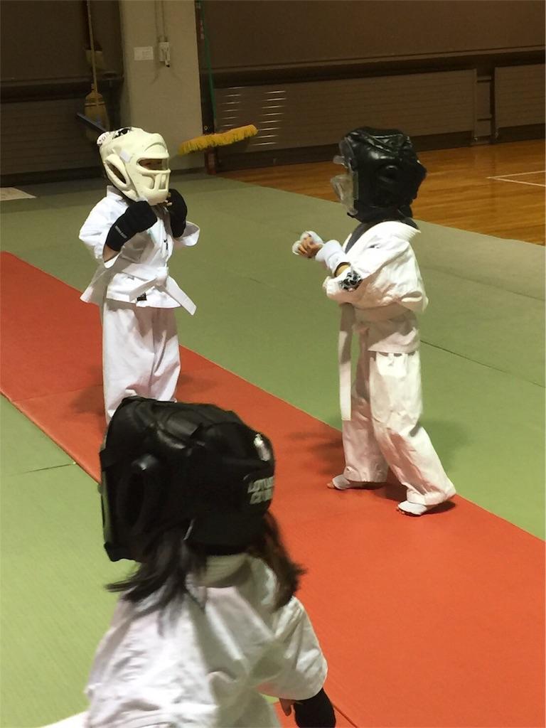 f:id:tatsuya_karate_mawasigeri_060110:20170403234959j:image