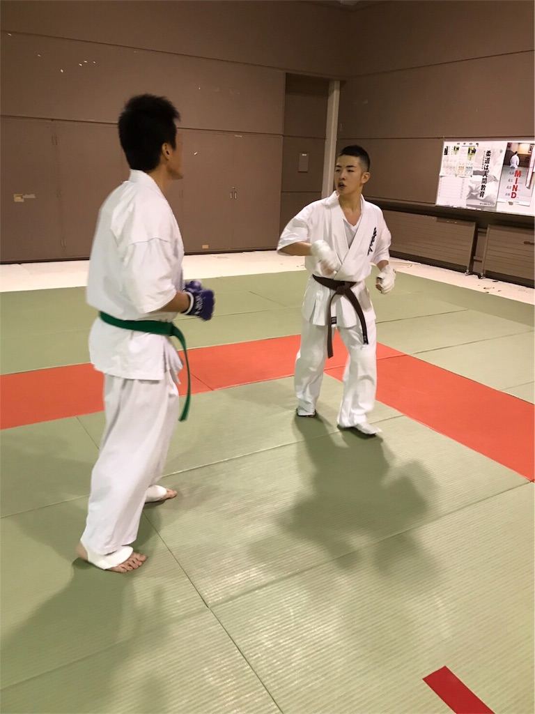 f:id:tatsuya_karate_mawasigeri_060110:20170409213333j:image