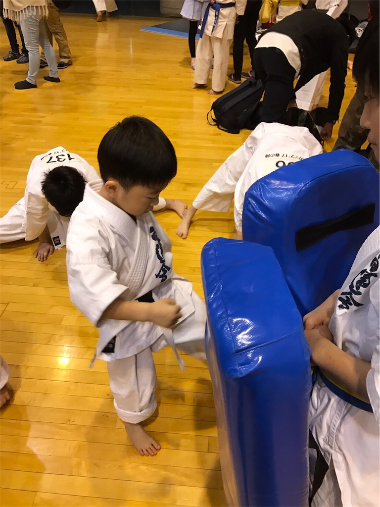f:id:tatsuya_karate_mawasigeri_060110:20170409213520j:image