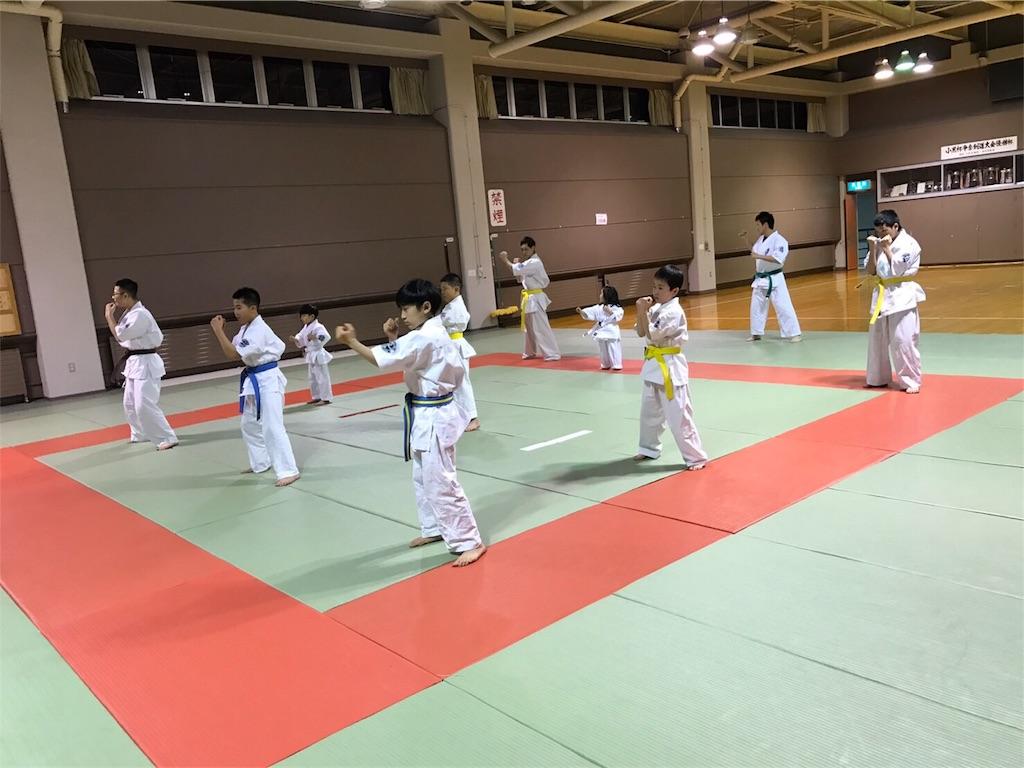 f:id:tatsuya_karate_mawasigeri_060110:20170410215737j:image