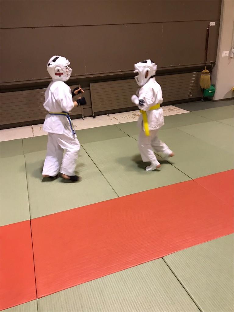 f:id:tatsuya_karate_mawasigeri_060110:20170410215827j:image