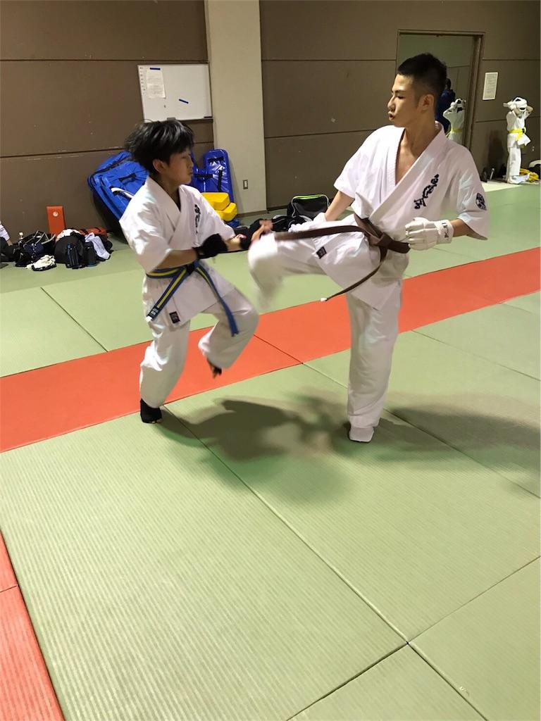 f:id:tatsuya_karate_mawasigeri_060110:20170410215911j:image