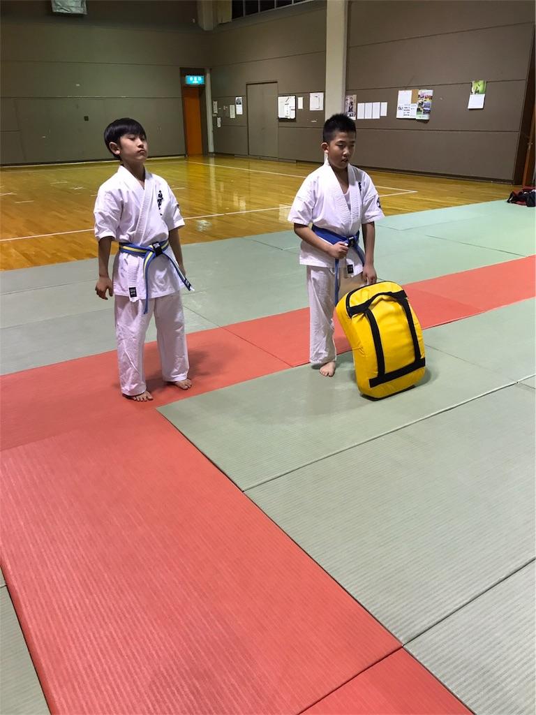 f:id:tatsuya_karate_mawasigeri_060110:20170417222833j:image