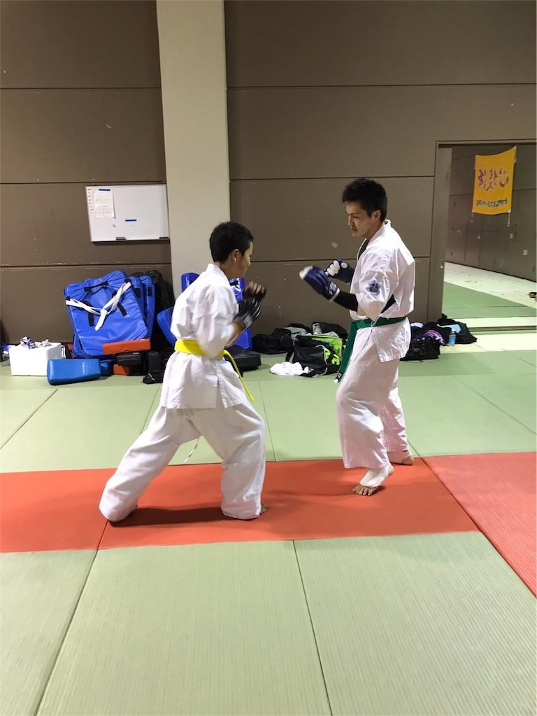 f:id:tatsuya_karate_mawasigeri_060110:20170417222910j:image