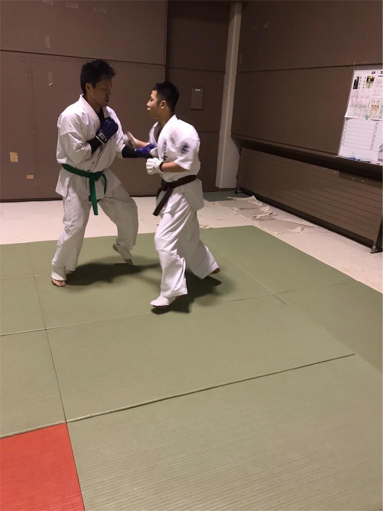 f:id:tatsuya_karate_mawasigeri_060110:20170417222917j:image