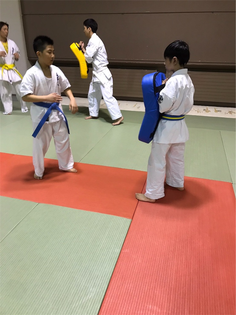 f:id:tatsuya_karate_mawasigeri_060110:20170424221905j:image