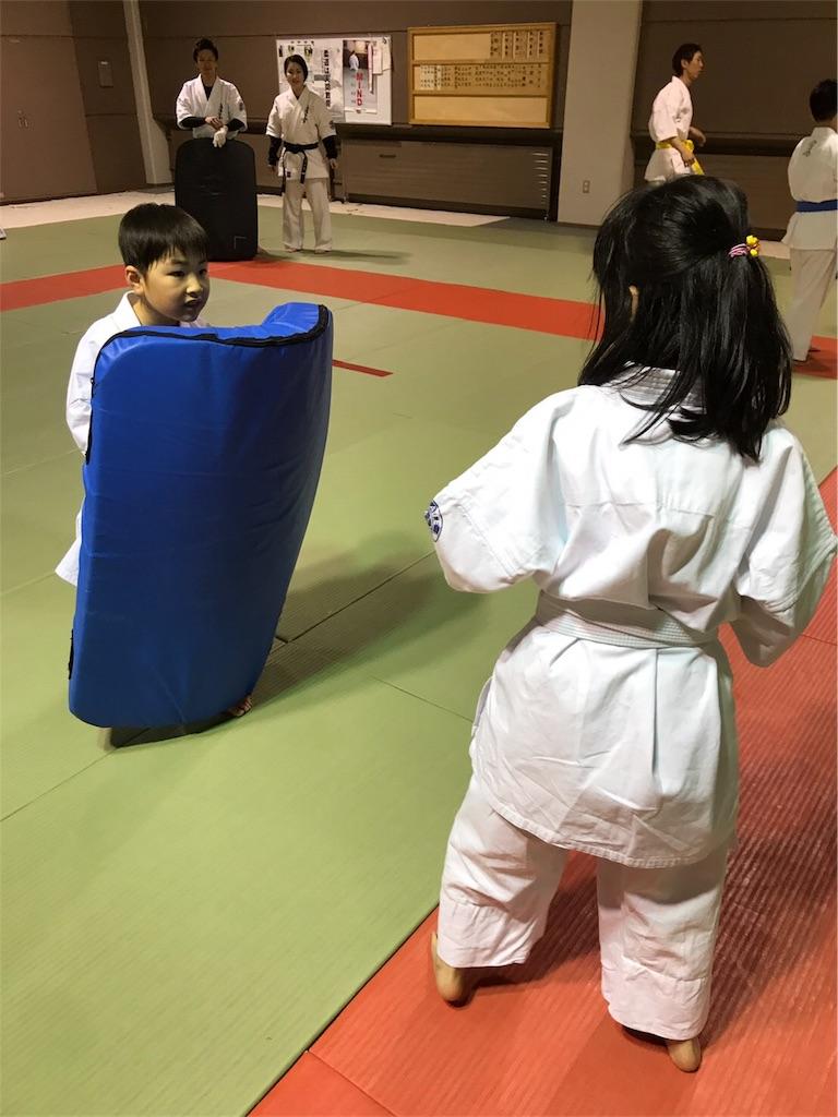 f:id:tatsuya_karate_mawasigeri_060110:20170424221921j:image