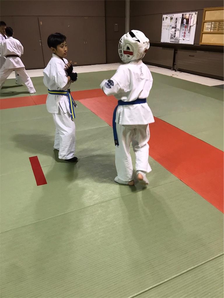 f:id:tatsuya_karate_mawasigeri_060110:20170424223146j:image