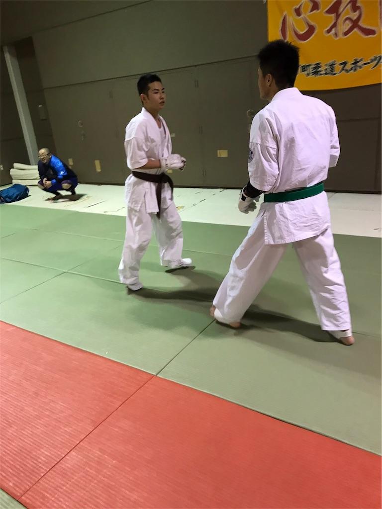f:id:tatsuya_karate_mawasigeri_060110:20170424223152j:image