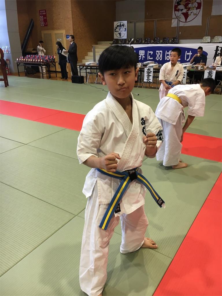 f:id:tatsuya_karate_mawasigeri_060110:20170506102324j:image