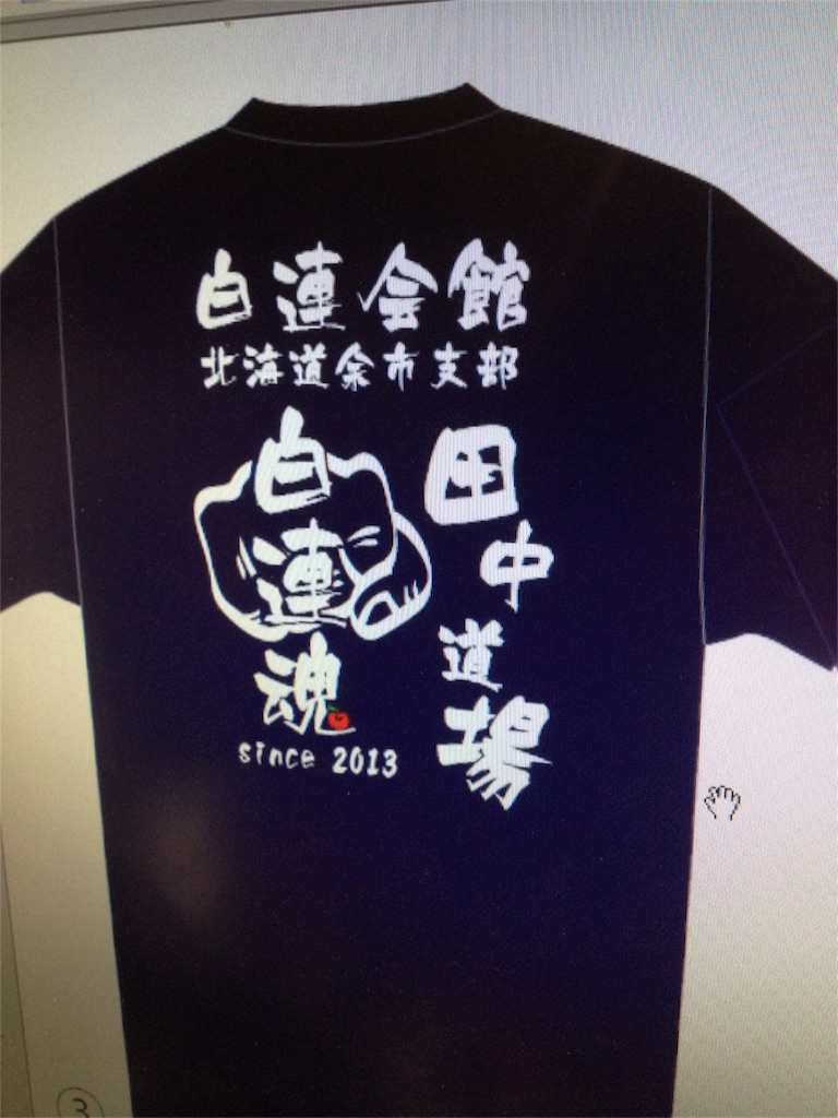 f:id:tatsuya_karate_mawasigeri_060110:20170508221959j:image