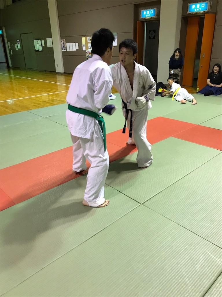 f:id:tatsuya_karate_mawasigeri_060110:20170520011210j:image
